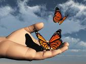 一只手中的彩色的蝴蝶连连看 — 图库照片