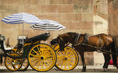Horse and carriage — Stock Photo