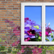Window and flowers — Stock Photo #29715239