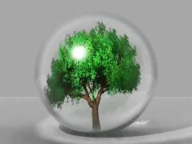 Tree in a bubble — Stock Video