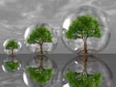 Trees in bubbles — Stock Photo