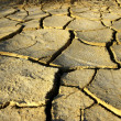 Dry and cracked earth — Stock Photo