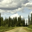 Stock Photo: Alaska, road from Fairbanks to Arctic Circle