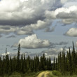 Stock Photo: Alaska,curvy road from Fairbanks to Arctic Circle