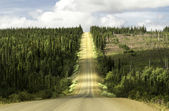 Alaska, rosd from Fairbanks to Arctic Circle — Stock Photo