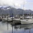 Seward ,Alaska — Stock Photo #12736944