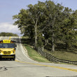 American country asphalt road with school bus sign — Stock Photo