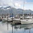 Seward ,Alaska — Stock Photo #13857782