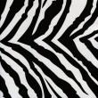 Royalty-Free Stock Photo: Zebra background