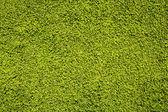纹理的翠绿枫叶 — 图库照片