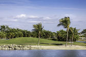 Palm trees by green lawn resort in Naples, Florida — Stock Photo