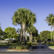 Road to community in Naples, Florida — Stock Photo