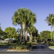 Stock Photo: Road to community in Naples, Florida