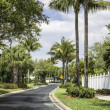 Traditional community road in Naples, Florida — Stock Photo #23852109