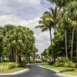 Traditional gated community road in Naples, Florida — Stock Photo