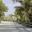 Stock Photo: Road by the beach