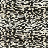 Wild animal skin — Stock Photo