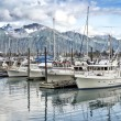 Stock Photo: Seward ,Alaska