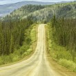 Gravel road in Alaska — Foto de Stock