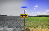 Directional arrow road sign — Stockfoto