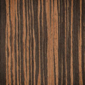 Ebony wood texture — Stock Photo