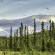 Mountains view from Alaska Highway — Stock Photo