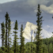 Mountain peak view from Alaska Highway — Stock Photo