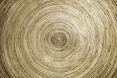 Bamboo round plate — Stock Photo