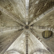 Vault ceiling — Stock Photo