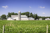 American countryside farm — Foto Stock