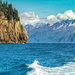 Wildlife Cruise around Resurrection Bay in Alaska — Foto de Stock
