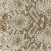 Wild animal skin pattern — Stock Photo