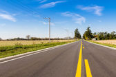 Asphalt country road with horizont — Stock Photo