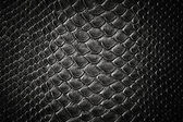 Crocodile black skin texture — Stock Photo