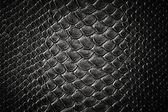 Crocodile black skin texture — Stock Photo