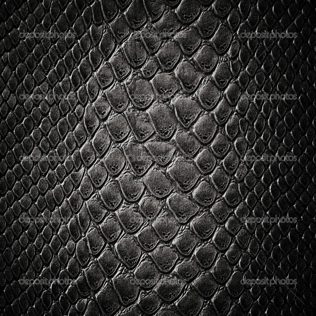 Текстура кожи змеи  № 3269870 загрузить