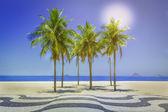 Palms full of sunshine on Copacabana Beach in Rio de Janeiro — Stock Photo
