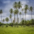 Brazilian modern architecture behind palms in Natal — Stock Photo #44008741