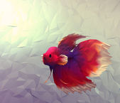 Fight fish in water 3d render computer graphic illustration in mosaic flat surface style. Wallpaper with betta siamese red, white and violet exotic fish in aquarium. — Stock Photo