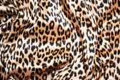 Tiger texture — Stock Photo