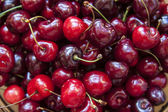 Background of cherry — Stock Photo