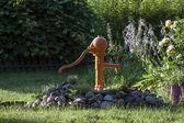 Orange pump among plants — Stock Photo