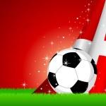 Denmark Soccer — Stock Vector