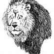 Royalty-Free Stock Vector Image: Lion