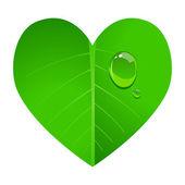 Heart Leaf — Stock Vector