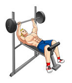 Fitness Weight Bench — Stock Photo