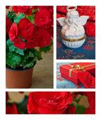 Coleção flores e decorações — Foto Stock