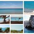 Seascapes summertime collection — Stockfoto