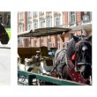 Foto Stock: Horses photo collage