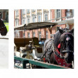 Horses photo collage — Stockfoto